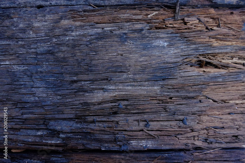 In de dag Brandhout textuur Close-up of Dark wood texture,Firewood surface with old natural pattern.