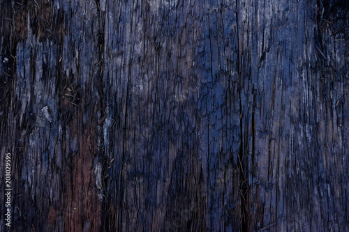 Close-up of Dark wood texture,Firewood surface with old natural pattern.