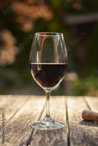 Foto op Plexiglas Wijn Glass of Red Wine