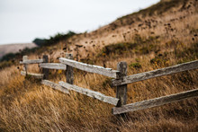 Fence By The Shore