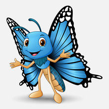 Cute Butterfly Cartoon On Whit...