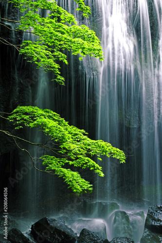 初夏の達沢不動滝(福島県・猪苗代町) © tk2001