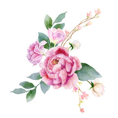 Panel Szklany Peonie Watercolor vector hand painting illustration of peony flowers and green leaves.