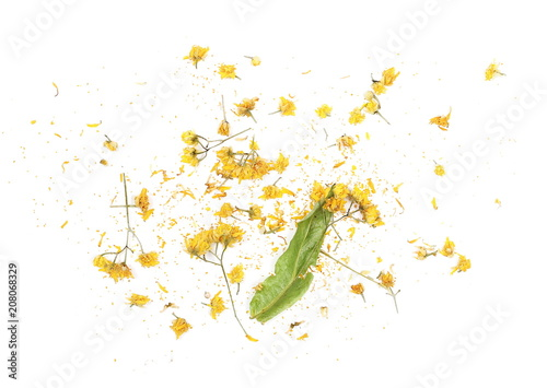 Foto op Canvas Madeliefjes Dry linden flowers and leaves isolated on white background, top view