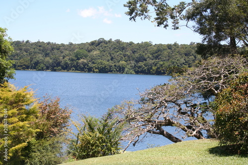 Fotografia lake barrine, crater lakes national park, queensland australia