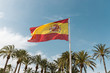 Flag of Spain beautiful and big to the background palms and blue sky with some clouds. Prepped Spanish cloth for the world championship.