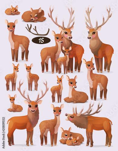 Photo vector red deer (cervus elaphus) family flock set