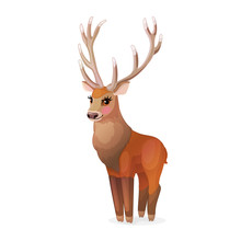 Vector Horned Red Deer Stag. Cervus Elaphus, Reindeer 02