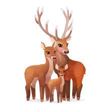 Vector Red Deer Family. Doe Mo...