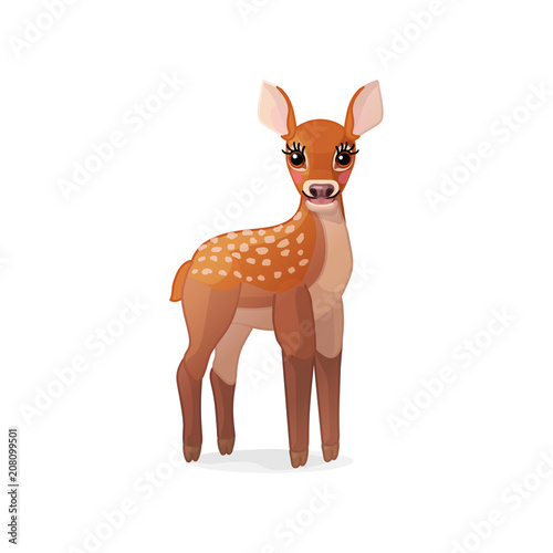 vector spotty fawn, baby red deer, young little bambi 04 Canvas Print