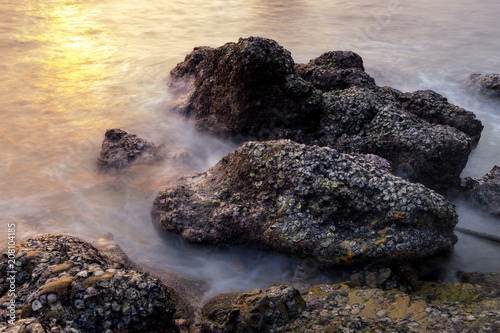 Photographie  surreal rock with sea shell and smooth long exposure