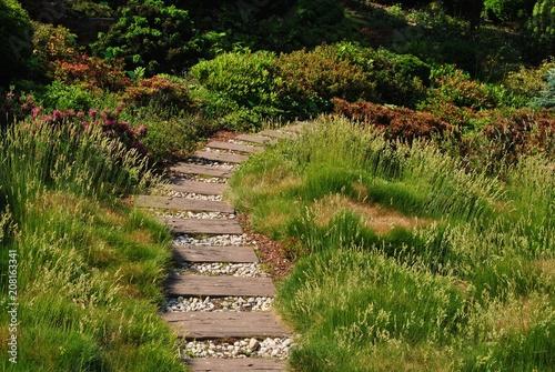 Ścieżka w ogrodzie - 208163341