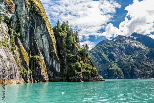 Photo Steep Cliffside Along the Tracy Arm Fjord in Alaska