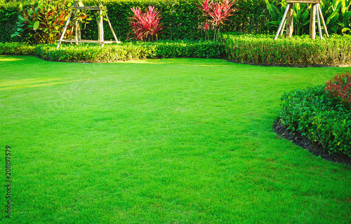 Foto auf Leinwand Gras Landscape design, Peaceful Garden, Green garden and lawn