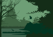 Wetlands With Forest And Flying And Standing Stork, Under The Evening Sky