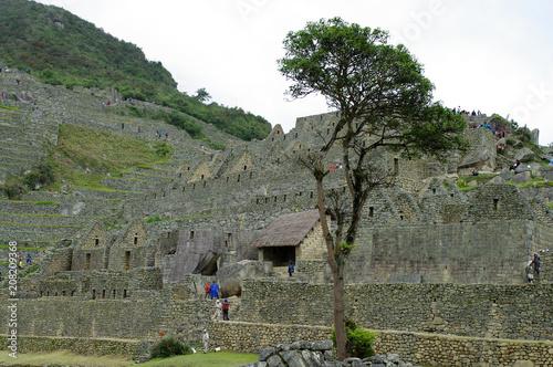 Papiers peints Kaki Terrasses du Machu Picchu -3