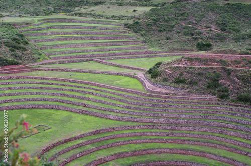 In de dag Olijf Terrasses de Moray -3