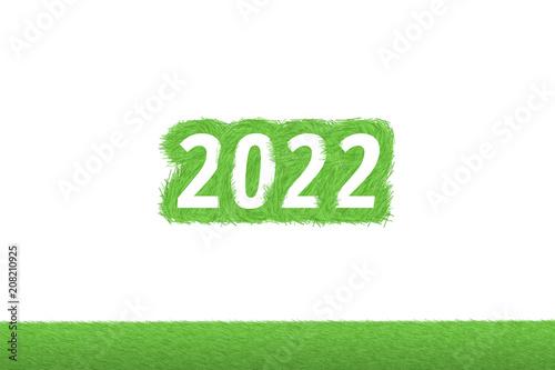 """""""2022"""" Gras Grüner Text auf weißem Hintergrund Poster"""