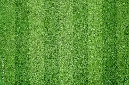 Obraz Fußball / Sport / Rasen - fototapety do salonu