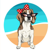 Vector Portrait Of Beagle Dog Wearing Sunglasses And Retro Bow. Summer Fashion Illustration. Vacation, Sea, Beach, Ocean. Hand Drawn Pet Portait. Poster, T-shirt Print, Holiday, Postcard, Summertime.