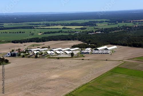 Zdjęcie XXL Przemysłowa hodowla bydła w Ferdinandshof