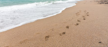 Footprints In The Sand On A Deserted Beach