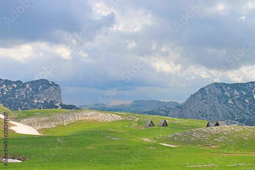 Foto op Canvas Pistache Durmitor National park, Montenegro