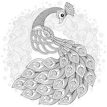 Peacock In Zentangle Style. Ad...