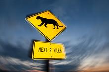 Puma Crossing Road Sign