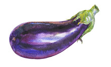Watercolor Painting Eggplant O...