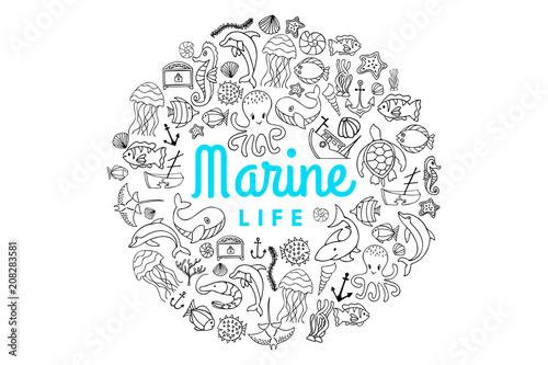 Canvas Print marine life creatures