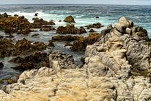 Asilomar State Marine Reserve