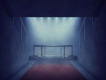 MMA Cage Lit By Spotlights, Mi...