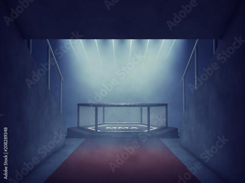 Garden Poster Martial arts MMA cage lit by spotlights, Mixed martial arts arena entrance