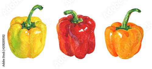 Fotografia, Obraz Watercolor yellow, red, orange paprika on white background