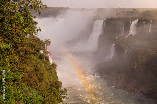 Wall Murals Waterfalls iguazu falls in argentina