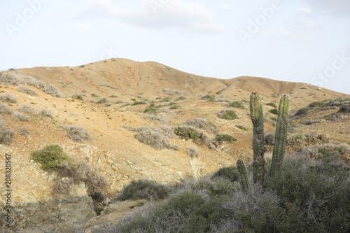 Fotobehang Wit Guajira desert