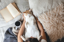 Hygge Concept With Cat, Book A...