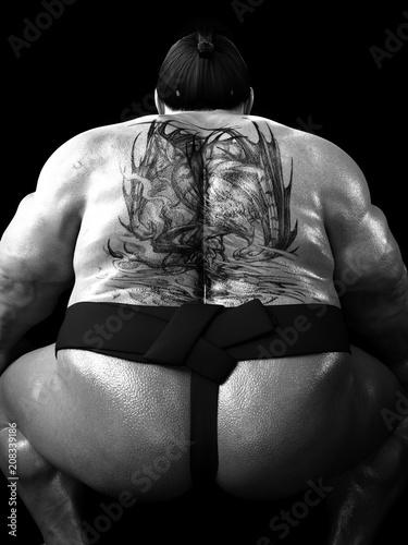 3D illustration Japanese sumo