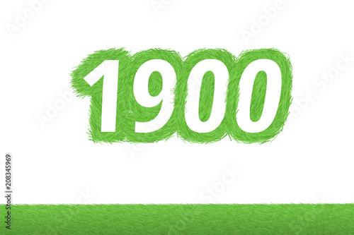 Poster  Jahr 1900 - weiße Zahl 1900 mit frischen gewachsenen grünen Grashalmen Symbol