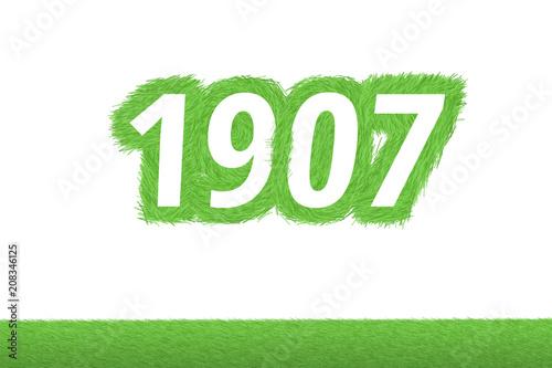 Foto  Jahr 1907 - weiße Zahl 1907 mit frischen gewachsenen grünen Grashalmen Symbol