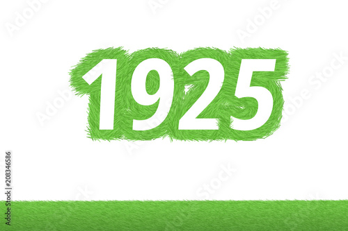 Fotografia  Jahr 1925 - weiße Zahl 1925 mit frischen gewachsenen grünen Grashalmen Symbol