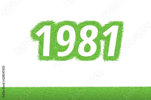Jahr 1981 - weiße Zahl 1981 mit frischen gewachsenen grünen Grashalmen Symbol Tableau sur Toile