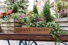Flora Filled Cart, Advertising...