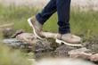 botas sobre piedras