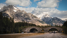 Drive Through Wildlife Overpass In Banff National Park