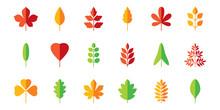 Leaf Flat Icon Set. Vector Col...