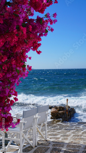 Poster Bordeaux Photo of beautiful bougainvillea flower with awsome colors in picturesque Greek island with deep blue waves