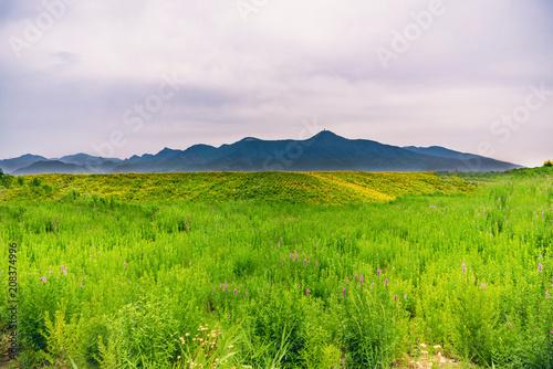 Fotobehang Wit A green hillside