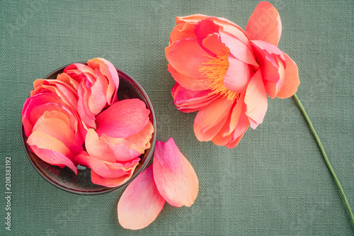 Handmade And Hand Dyed Crepe Paper Peony Flowers With Crepe Paper